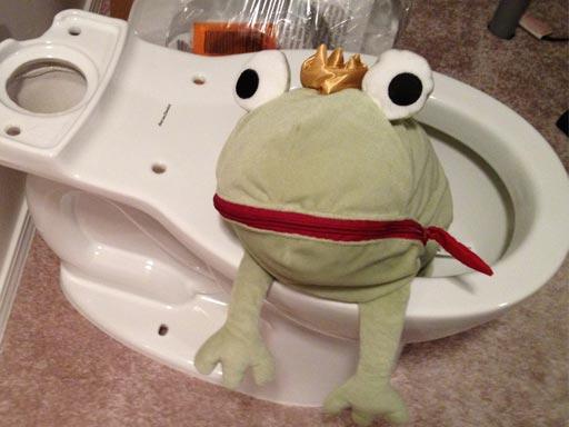 frog_toilet