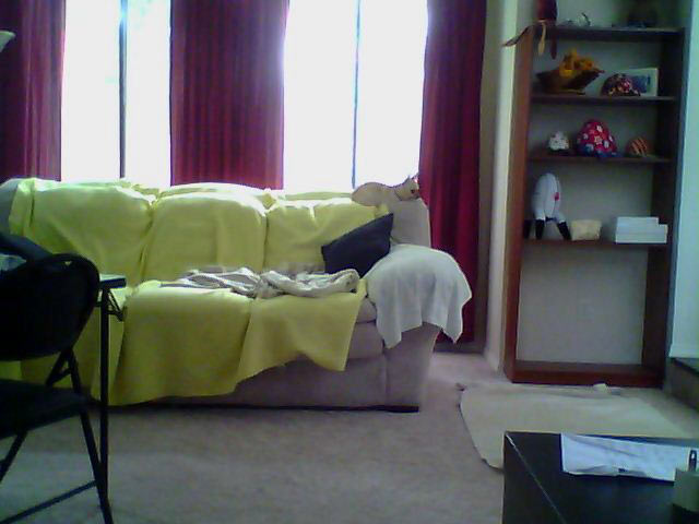 DLink_Camera_Watching_Dog