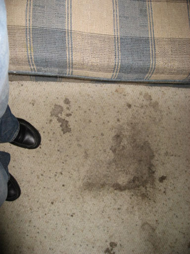 reasons why your house hasn't sold filthy carpet