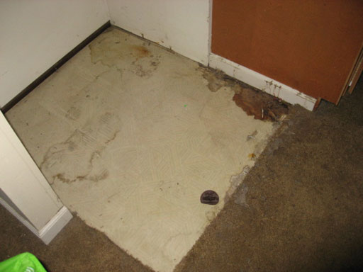reasons why your house hasn't sold water damage