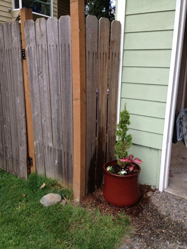 FrontYard_Potted