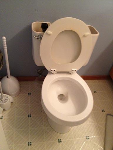 DIY toilet replacement