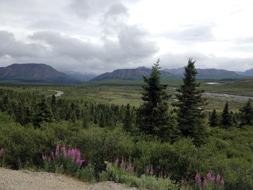 alaska_2013_park_road
