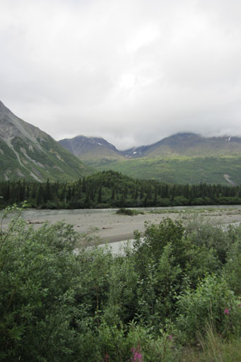 Driving from Denali to Anchorage scenery