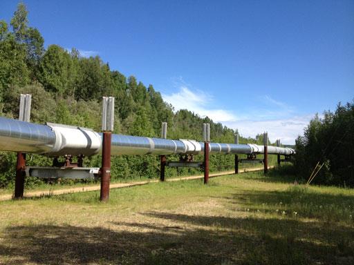 Trans Alaska pipeline near Fairbanks